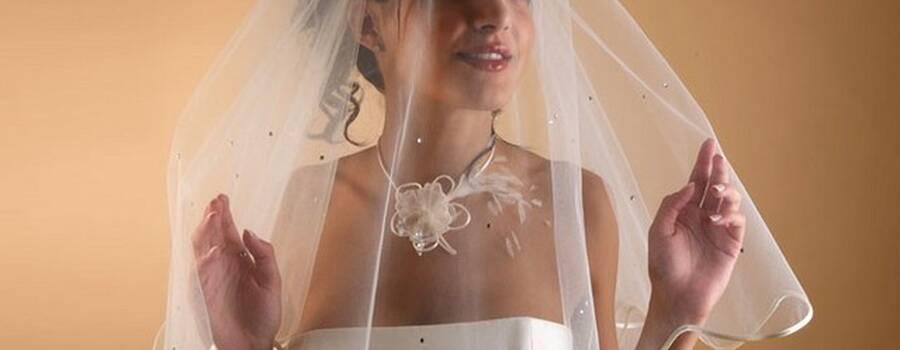 Voile de mariée Dejean