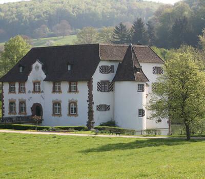 Beispiel: Vorderansicht, Foto: Wasserschloss Inzlingen.