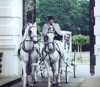 Beispiel: Ihre Kutsche mit Chauffeur, Foto: Berliner Hochzeitskutschen.