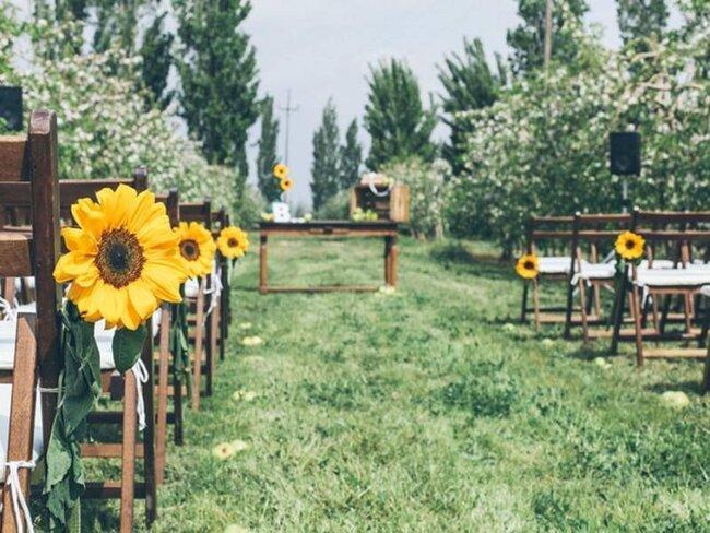 Descubre los diferentes tipos de decoraci n de ceremonia for Decoracion jardin rural