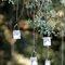 Pequeñas velas colgando de árboles en una boda exterior.