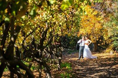 Ivonne y Carlos, magia y amor en una boda al aire libre