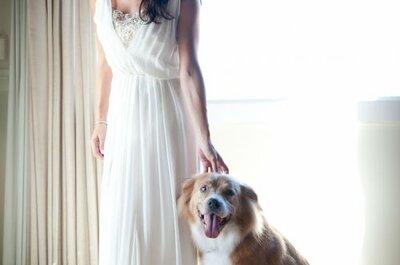 5 dicas na hora de contratar o fotógrafo do seu casamento