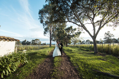 Oui oui bodas: Deja que tu sueño se haga realidad
