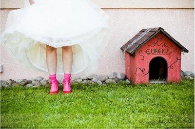 Chiens invités le jour de votre mariage !