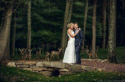 Hochzeits-Photobombing der besonderen Art