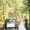 Novios montando en el coche tras celebrar su boda en el bosque.