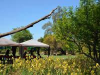 Locales de eventos con ambientes naturales en Santiago