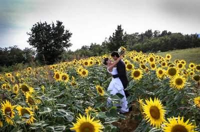 40 foto che dimostrano che l'amore esiste davvero: vota la tua preferita!