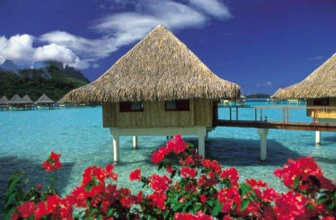 La Polinesia non è solo mare, è anche profumo di libertà incontaminata.