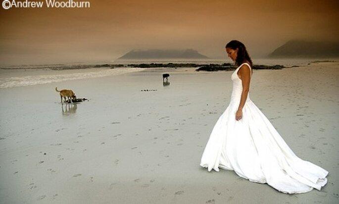 Las fotos de boda con tu perro le darán un toque muy original - Foto Andrew Woodburn