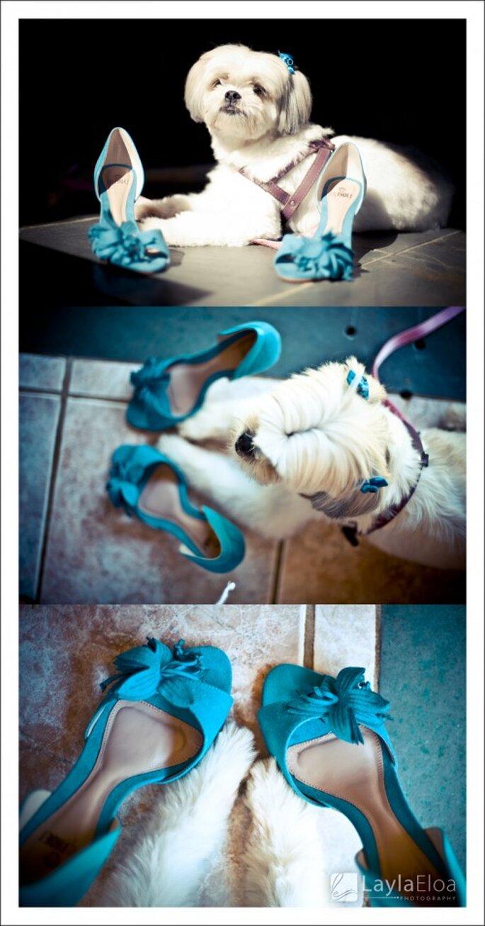 Accesorios de boda en azul turquesa. Fotografía Layla Eloa