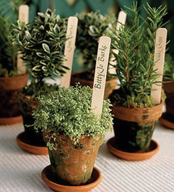 You searched for: herb wedding favors! Etsy is the home to thousands of handmade, vintage, and one-of-a-kind products and gifts related to your search. No matter what you're looking for or where you are in the world, our global marketplace of sellers can help you .