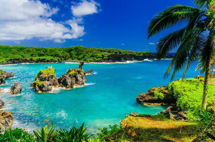 Maui - Shutterstock