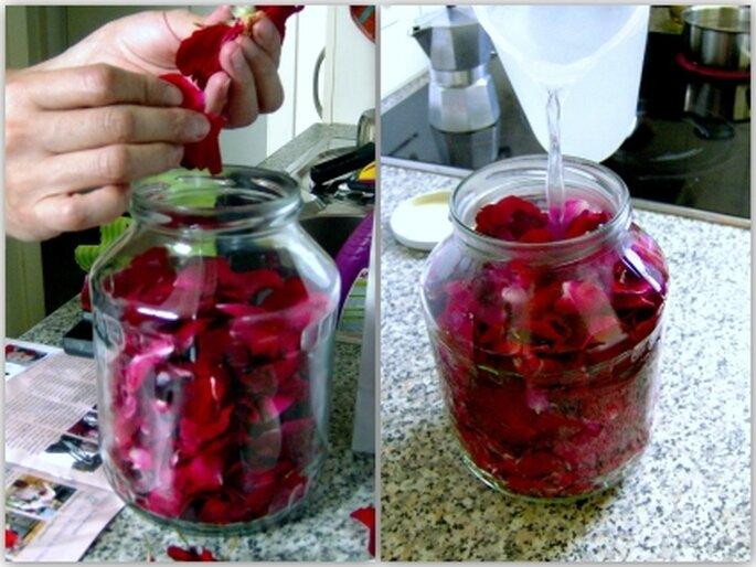Preparación del tónico agua de rosas
