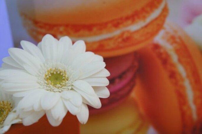 I macarons sono un altro dei dolci più gettonati ai matrimoni! Foto : One Day Event