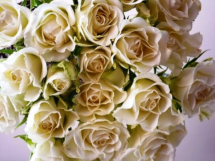 Blütentraum in Beige - Foto: artesaniaflorae, flickr