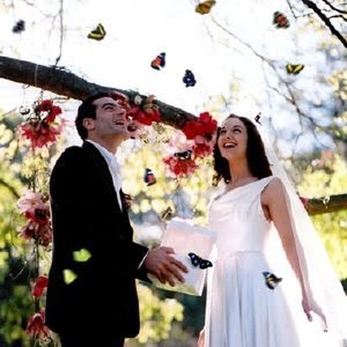 Libera mariposas el día de tu boda.