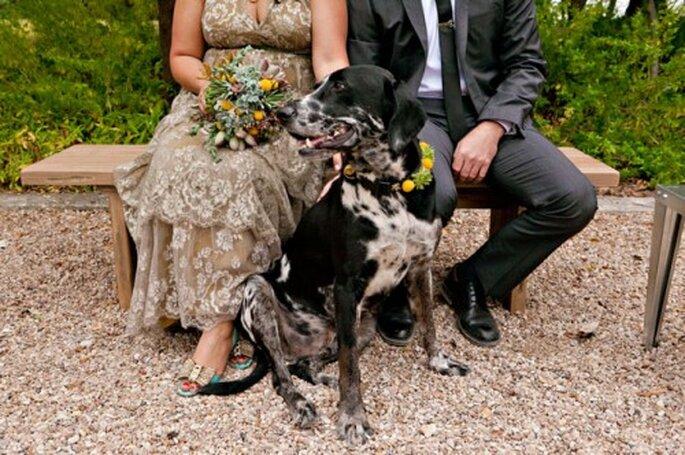 Tu mascota puede formar parte de tu boda - Fotos: Green Wedding Shoes