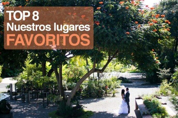 Top 8 de locaciones para fotografía de bodas - Foto Antonio Saucedo