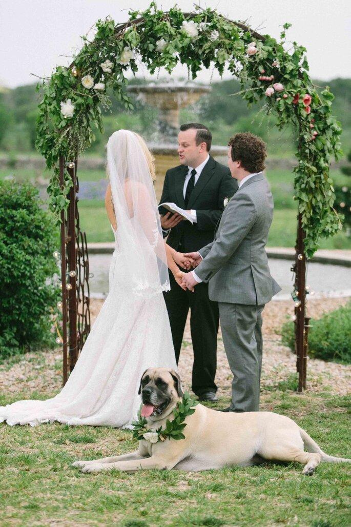 Tu mascota en tu boda - Heather Hawkins Photography