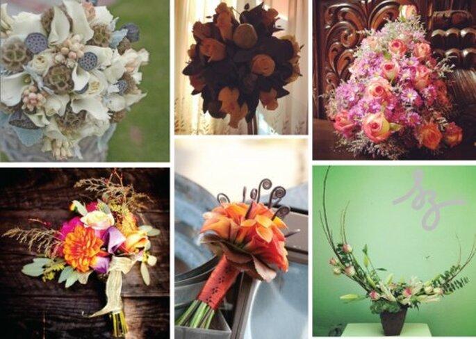 Collage de inspiración de flores secas para boda en otoño. Fotos Ambiencefloral, Indulgy