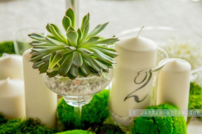 студия флористики и декора le jardin botanique