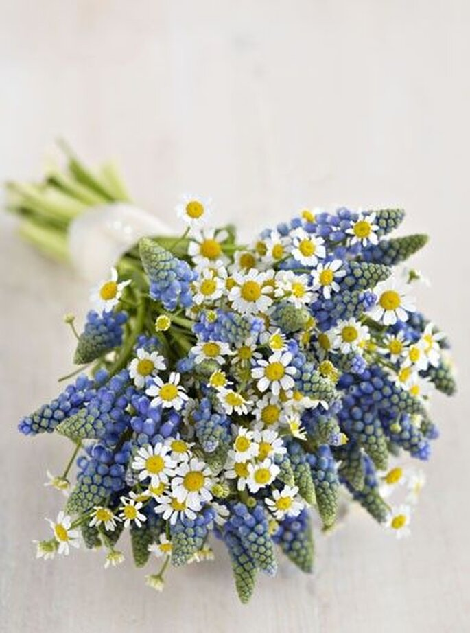 Flores silvestres para el ramo de novia. Foto: Lianne Nichols