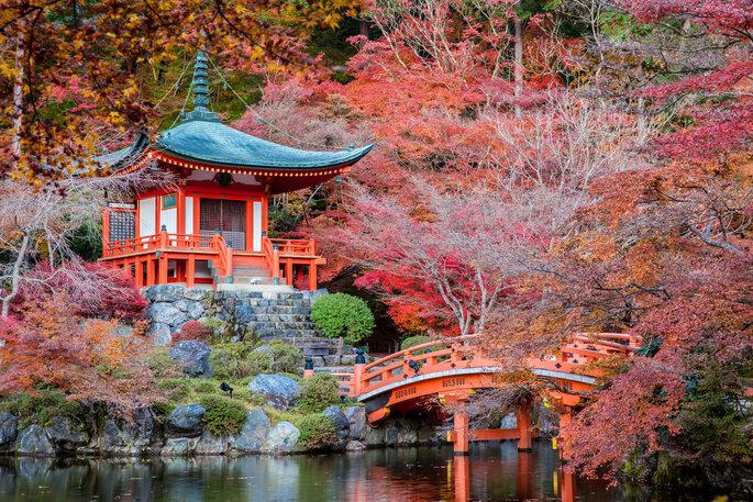 Quioto. Foto via Shutterstock: Pigprox