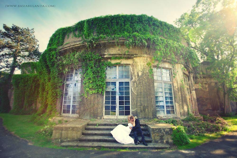 zdjęcia ślubne pergola