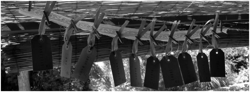 Bodas hechas a medida cuidando todos los detalles - Boda M&F en La Finca (Elche)