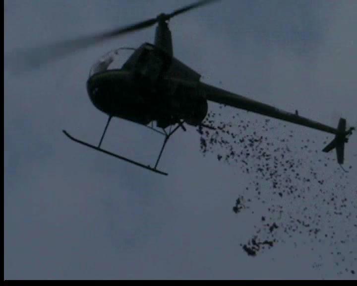 Lancio dei petali dall'elicottero!