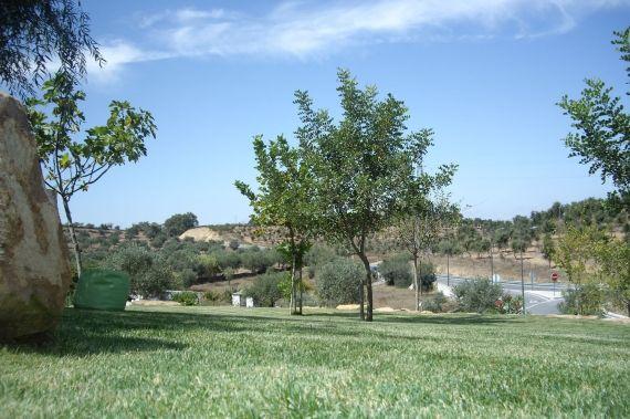 Foto: Quinta Solar da Portela