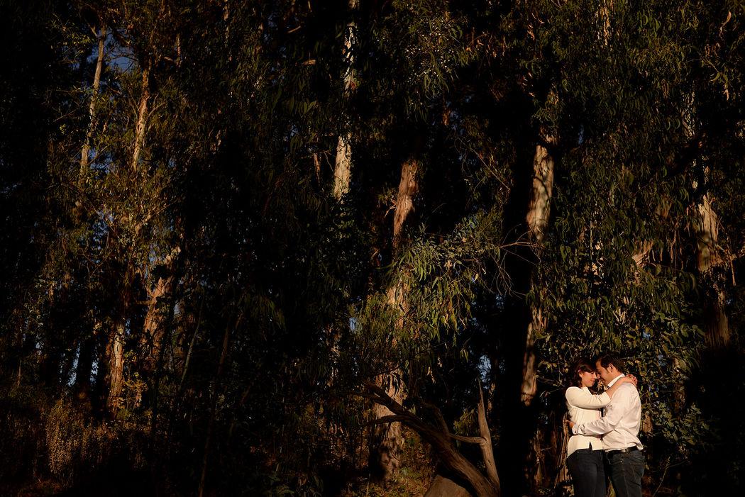 bosque y novios
