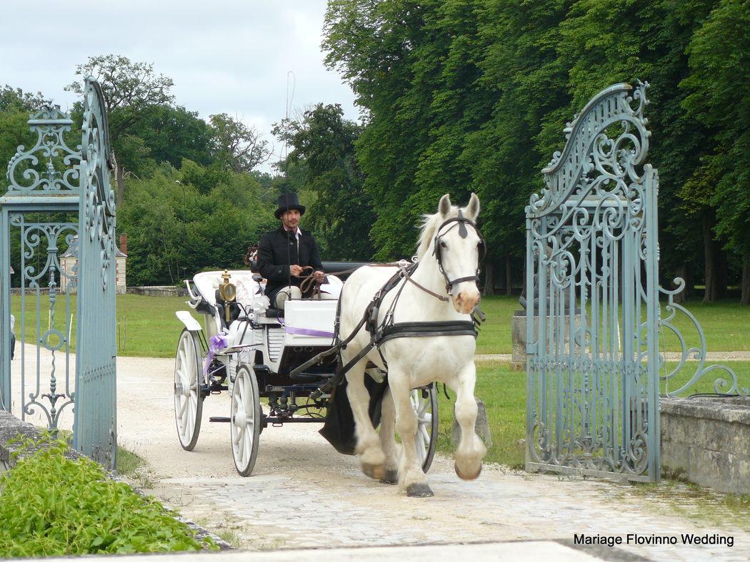 Transport des mariés par Flovinno Wedding