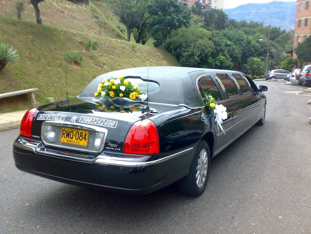 Presencia  con  sobriedad  para  el día de  tu  Matrimonio........nada  mejor ¡