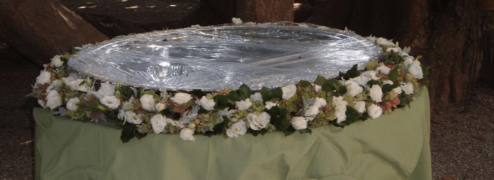 Lami Fiori