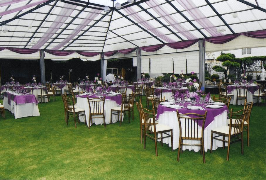 Quinta Schaefer