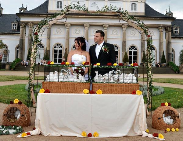 Beispiel: Hochzeitspaar mit Schneeweißen Hochzeitstauben, Foto: Hochzeitstauben Dresden®.
