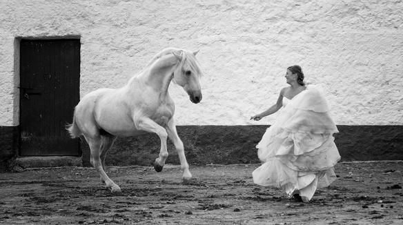 Jesús Gallo Fotógrafo