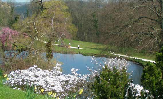 Beispiel: Impressionen aus dem Schlosspark, Foto: Schloss Fachsenfeld.