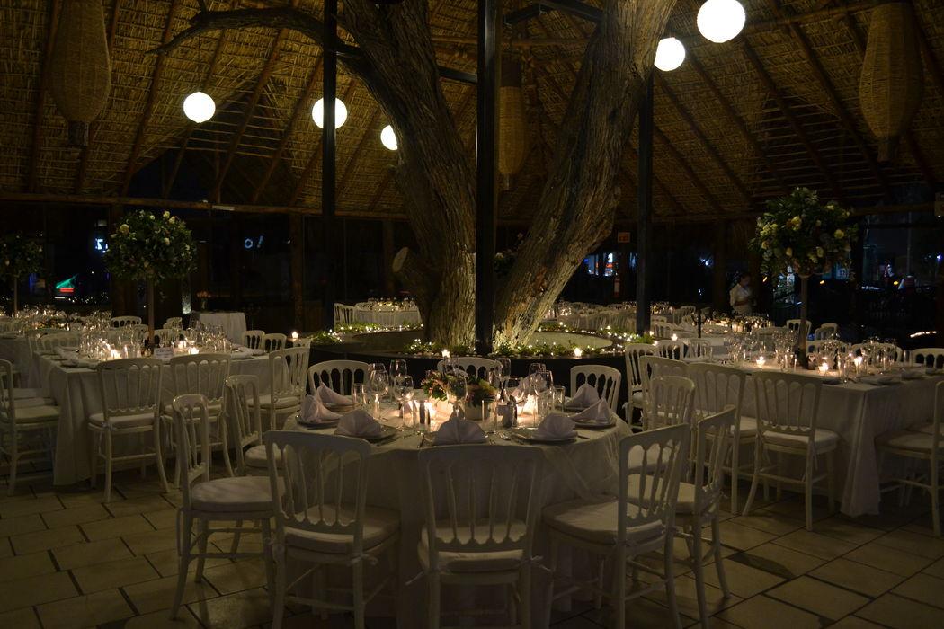 Romántica boda en tonos blancos y sillas versalles a la luz de las velas y enmarcado por un imponente mezquite natural.