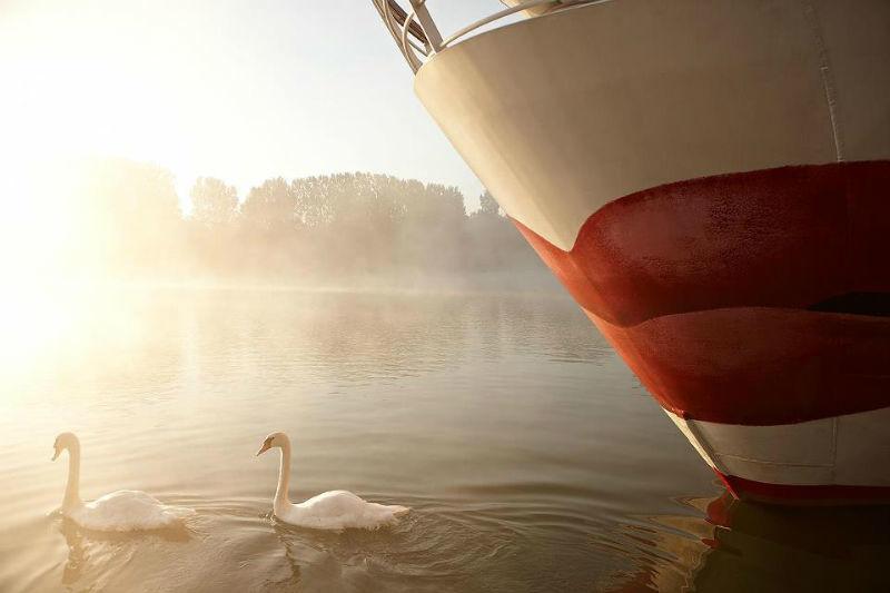 Beispiel: Bug eines Kreuzfahrtschiffs, Foto: A-Rosa.