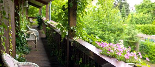 Beispiel: Natur erleben direkt vom Balkon des Hotels, Foto: Hotel Bock.