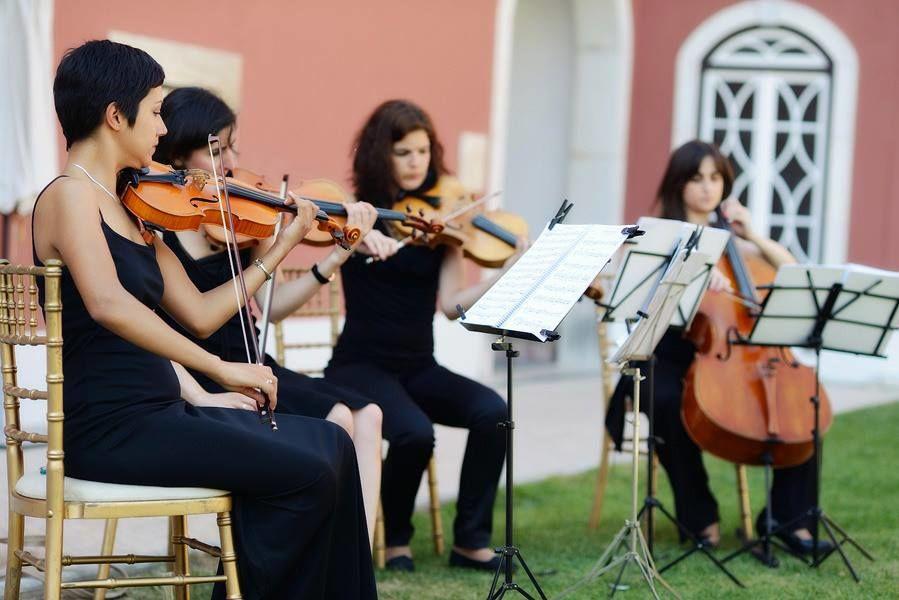 String Quartet Solutions