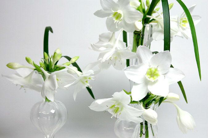 Beispiel: Schlichte Eleganz, Foto: Marsano Blumen.