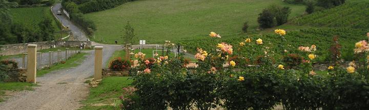 Le Domaine de Bois Mayeux