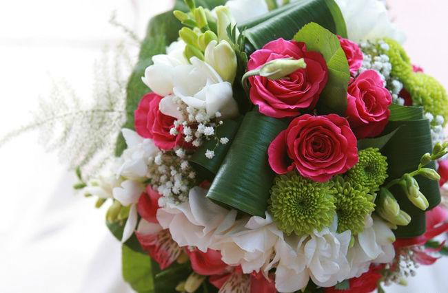 Amarante Fleurs
