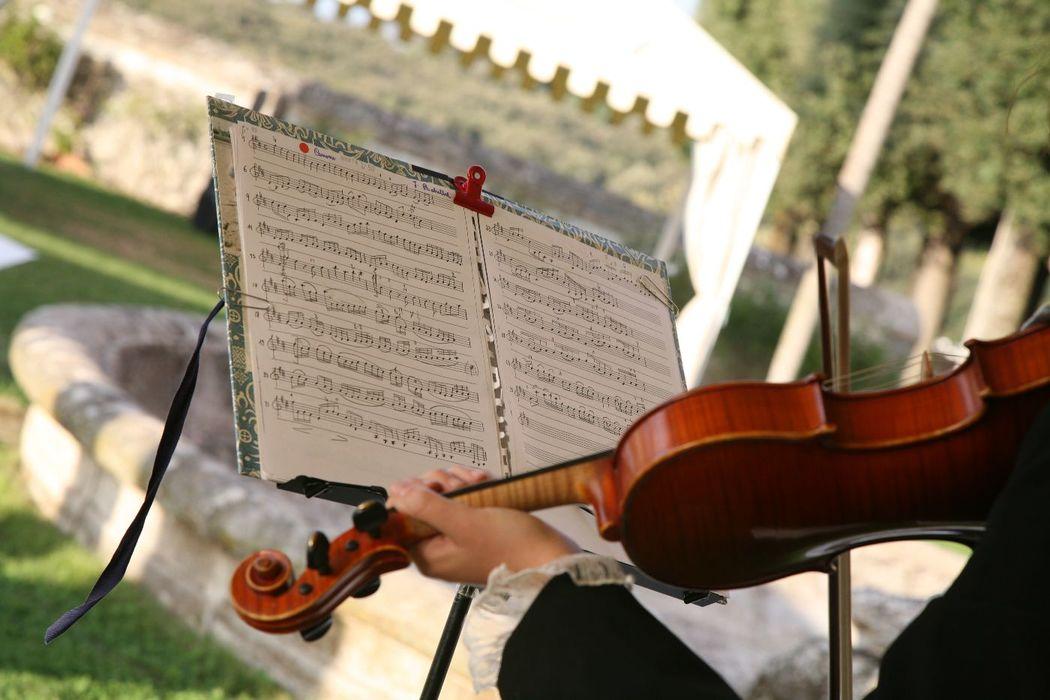 Park Hotel Villa Grazioli: Violinista