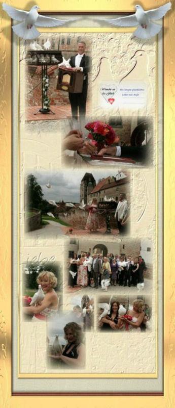 Beispiel: Hochzeitstauben, Foto: Hochzeitstaubenservice Deubelli.